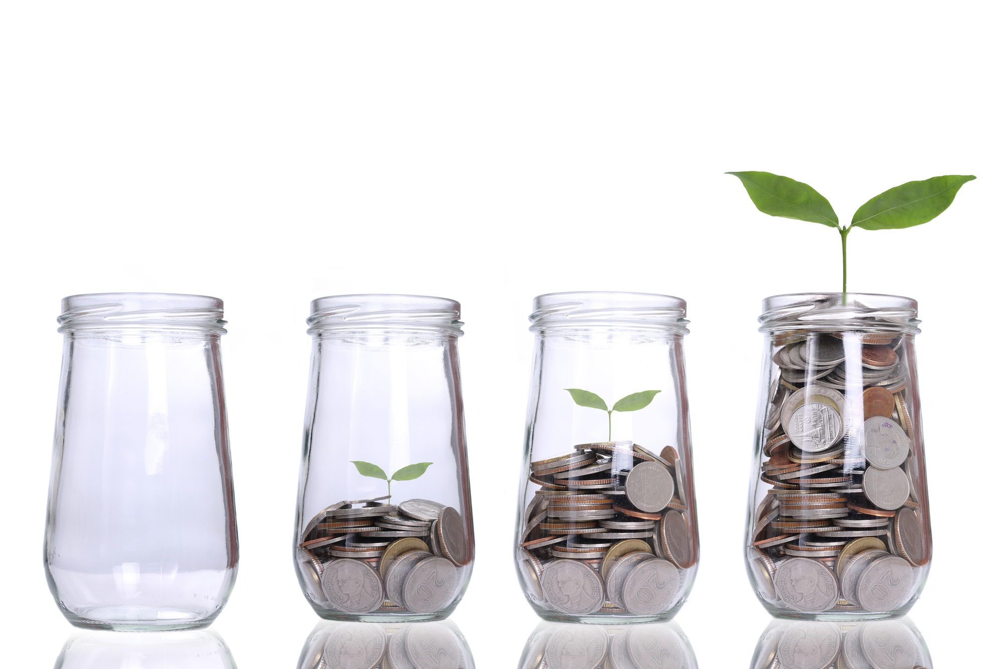 Growing plant step with coin money